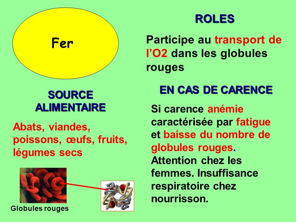 Fer ROLES Participe au transport de l'O2 dans les globules rouges