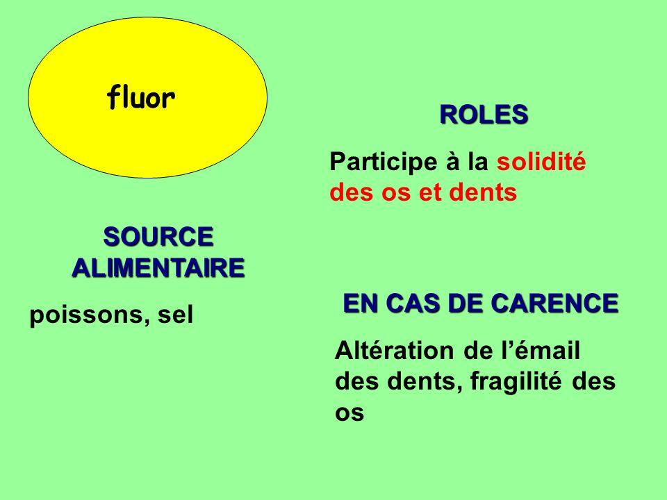 fluor ROLES Participe à la solidité des os et dents SOURCE ALIMENTAIRE