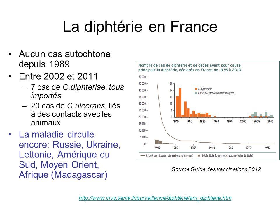 La diphtérie en France Aucun cas autochtone depuis 1989