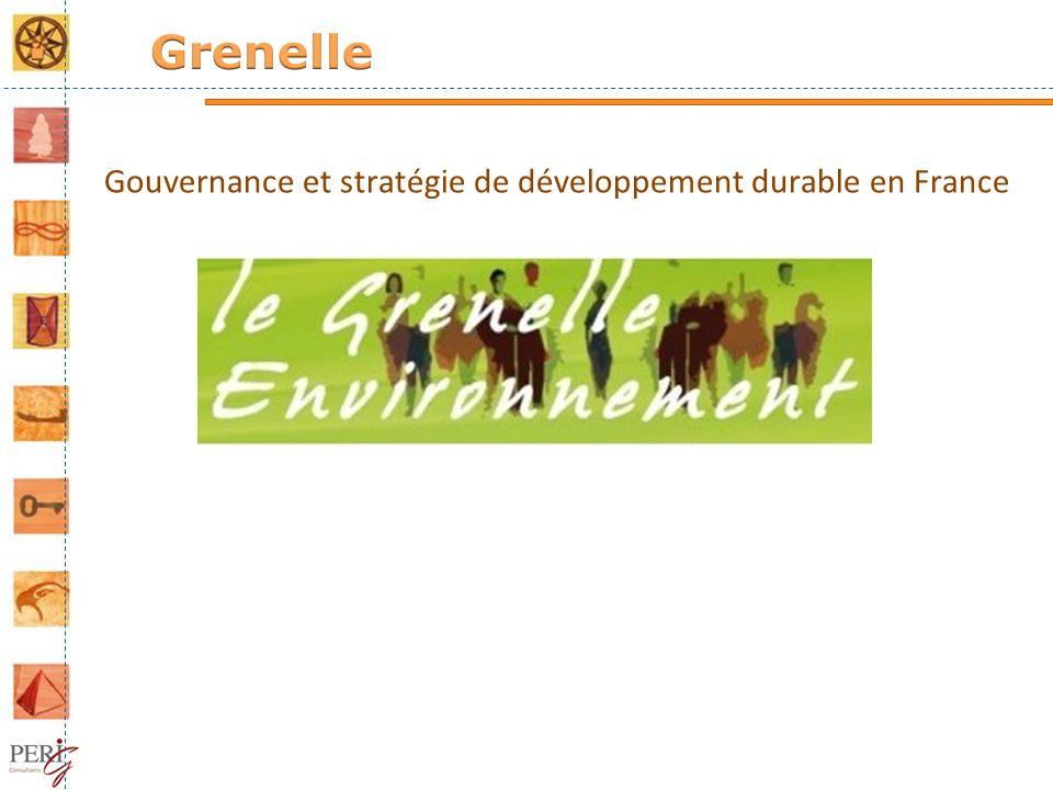 Grenelle Gouvernance et stratégie de développement durable en France