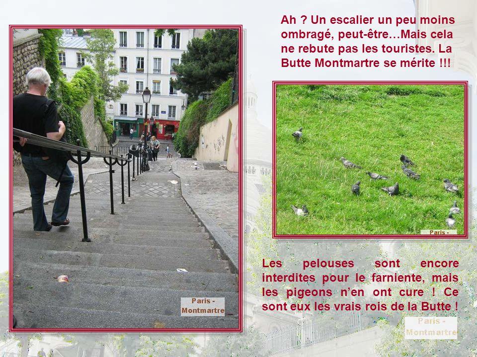 Ah Un escalier un peu moins ombragé, peut-être…Mais cela ne rebute pas les touristes. La Butte Montmartre se mérite !!!