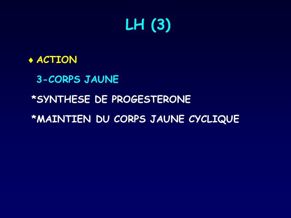 LH (3) ACTION 3-CORPS JAUNE *SYNTHESE DE PROGESTERONE