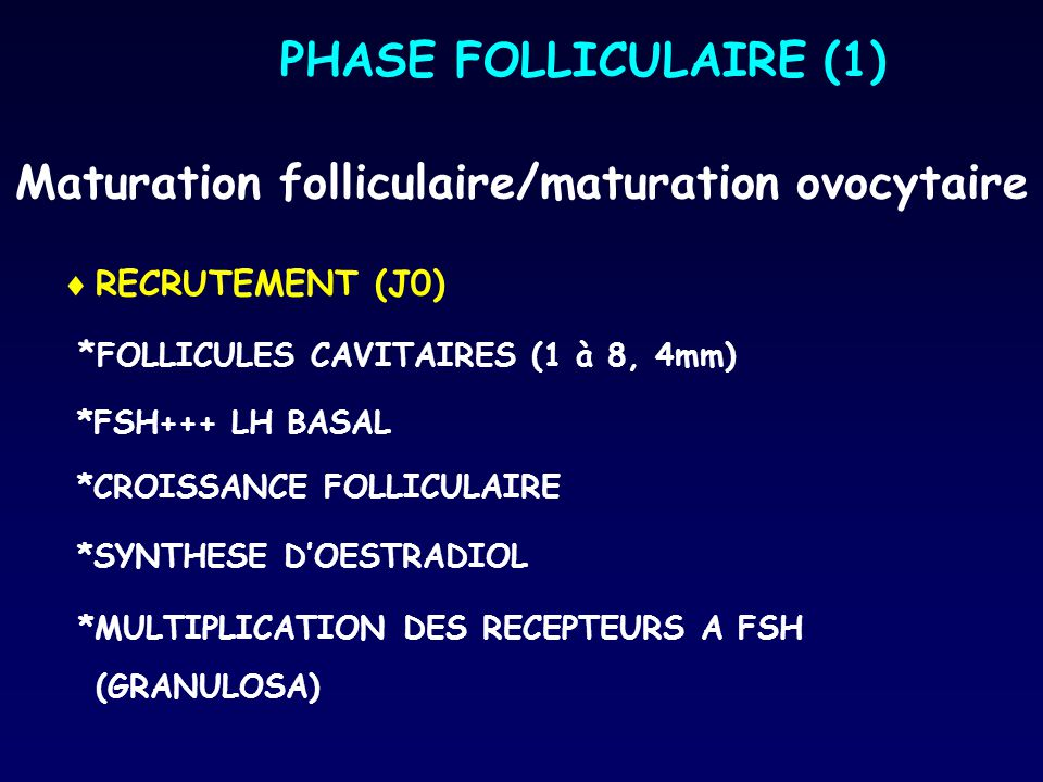 Maturation folliculaire/maturation ovocytaire