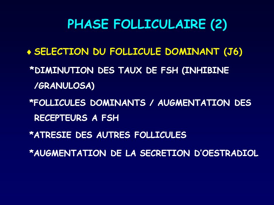 PHASE FOLLICULAIRE (2) SELECTION DU FOLLICULE DOMINANT (J6)