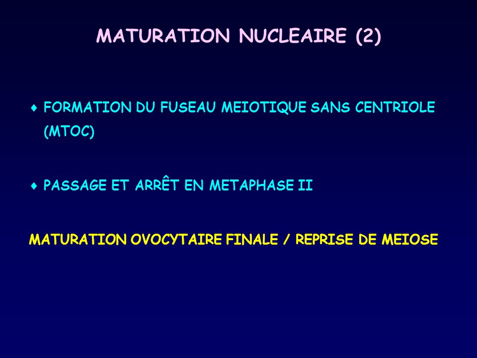 MATURATION NUCLEAIRE (2)