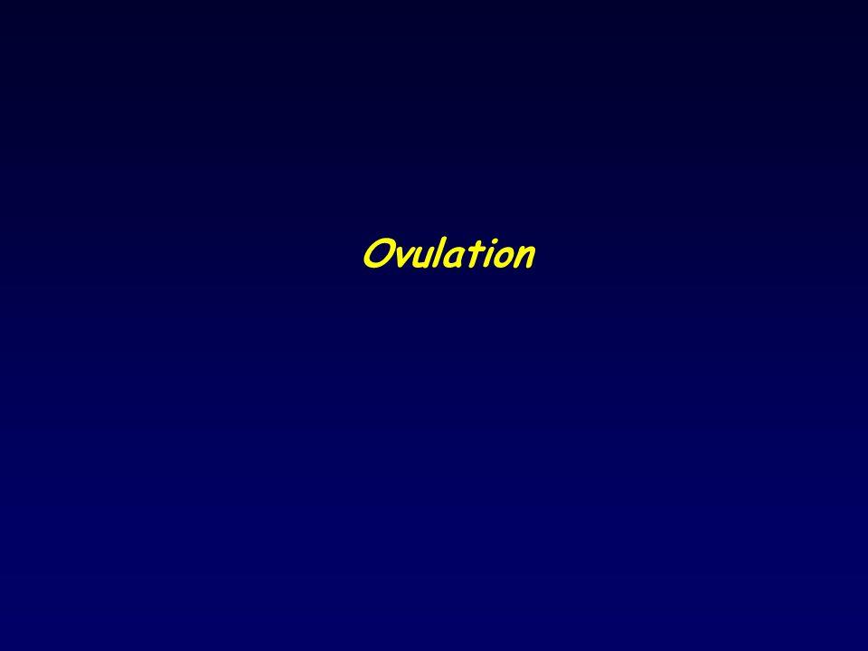 Ovulation