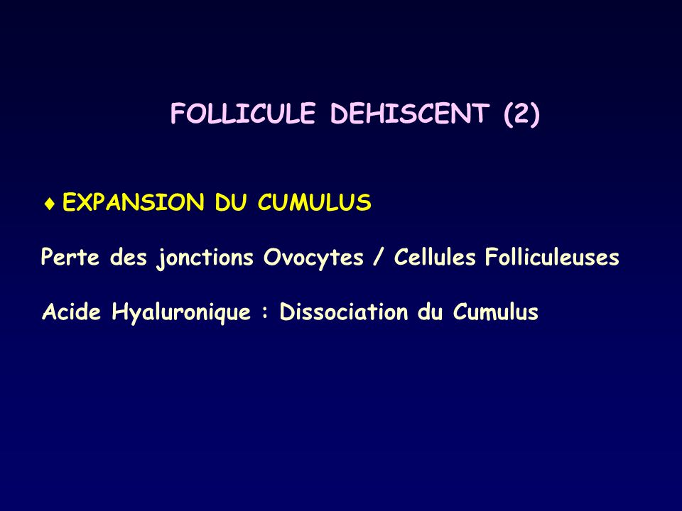 FOLLICULE DEHISCENT (2)