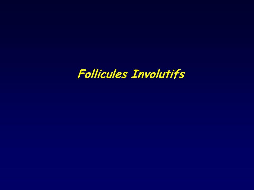 Follicules Involutifs
