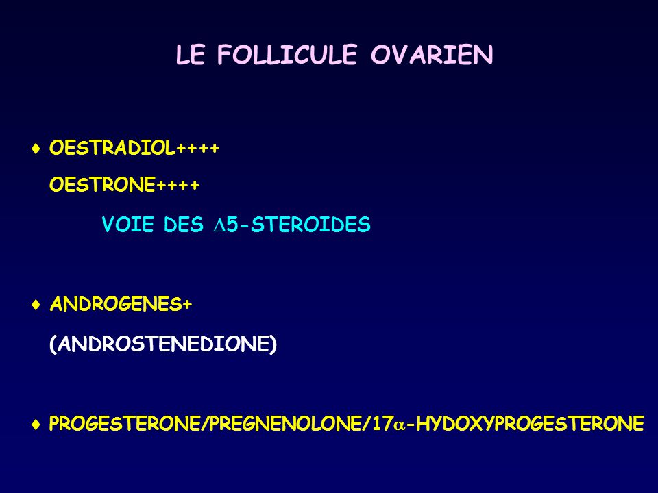 LE FOLLICULE OVARIEN VOIE DES 5-STEROIDES (ANDROSTENEDIONE)