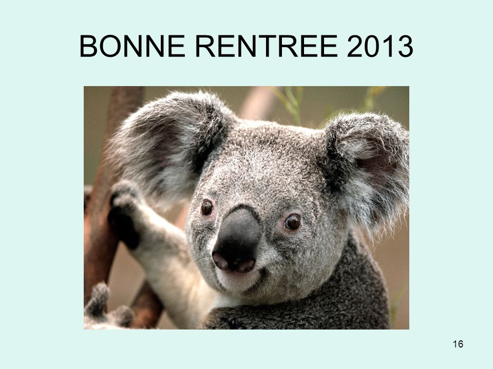 BONNE RENTREE 2013