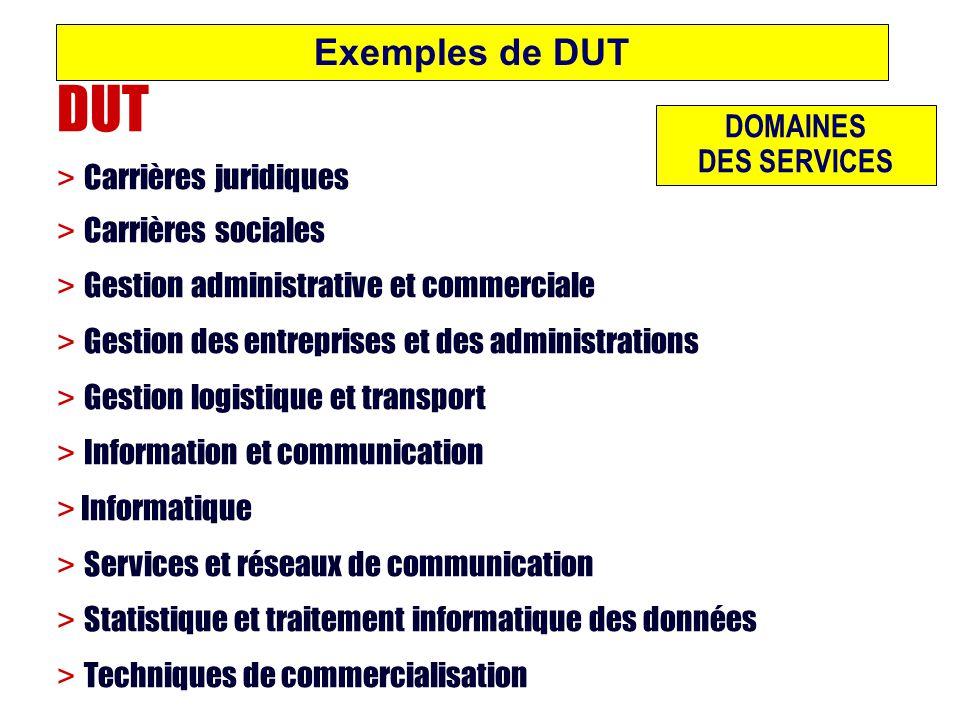 DUT Exemples de DUT > Carrières juridiques DOMAINES