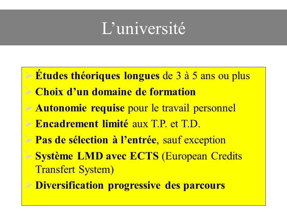L'université Études théoriques longues de 3 à 5 ans ou plus