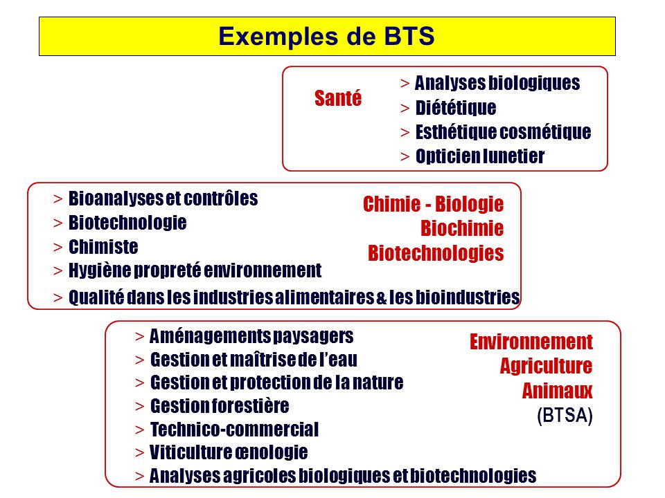 Exemples de BTS Santé Chimie - Biologie Biochimie Biotechnologies