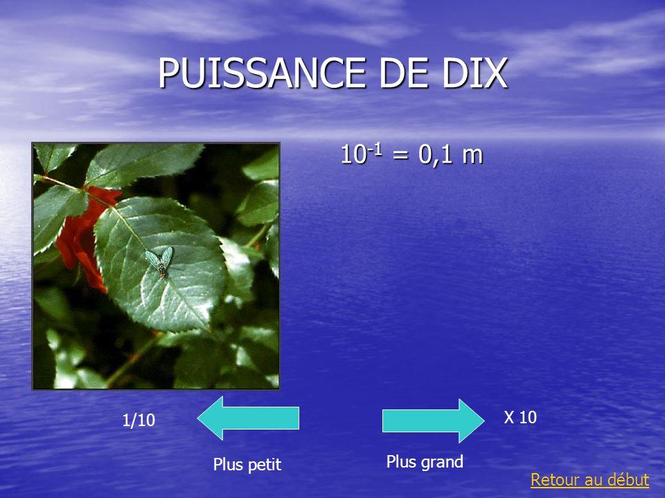 PUISSANCE DE DIX 10-1 = 0,1 m X 10 1/10 Plus grand Plus petit