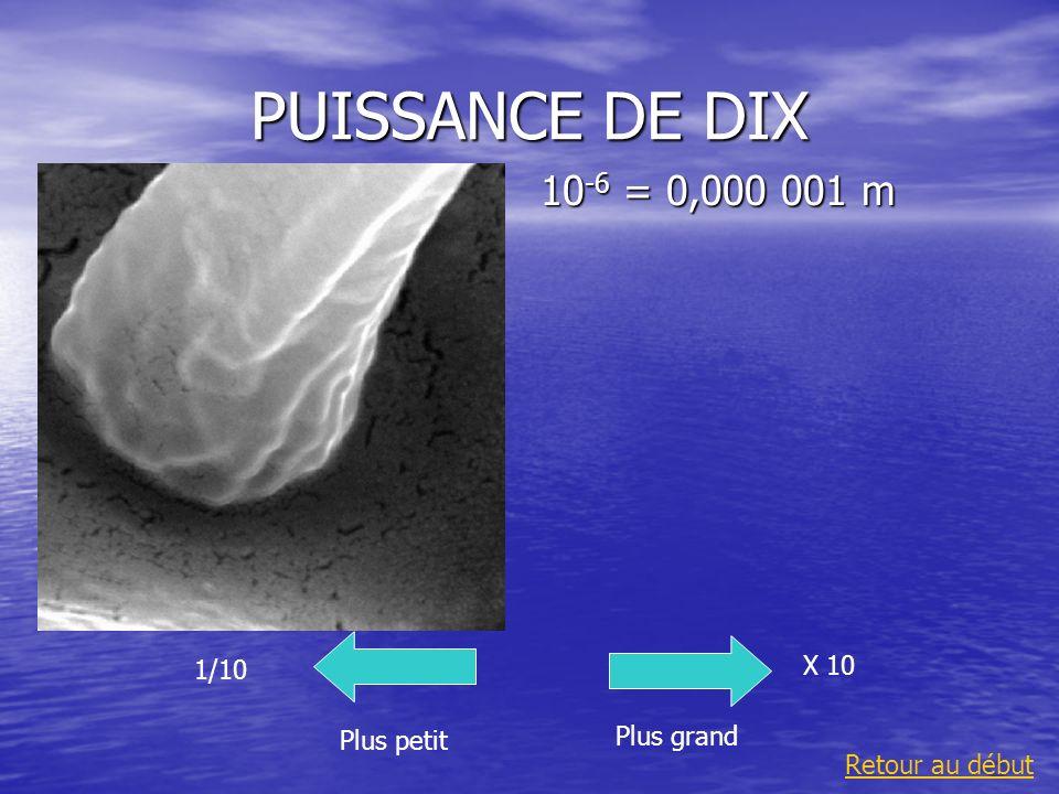 PUISSANCE DE DIX 10-6 = 0,000 001 m X 10 1/10 Plus grand Plus petit