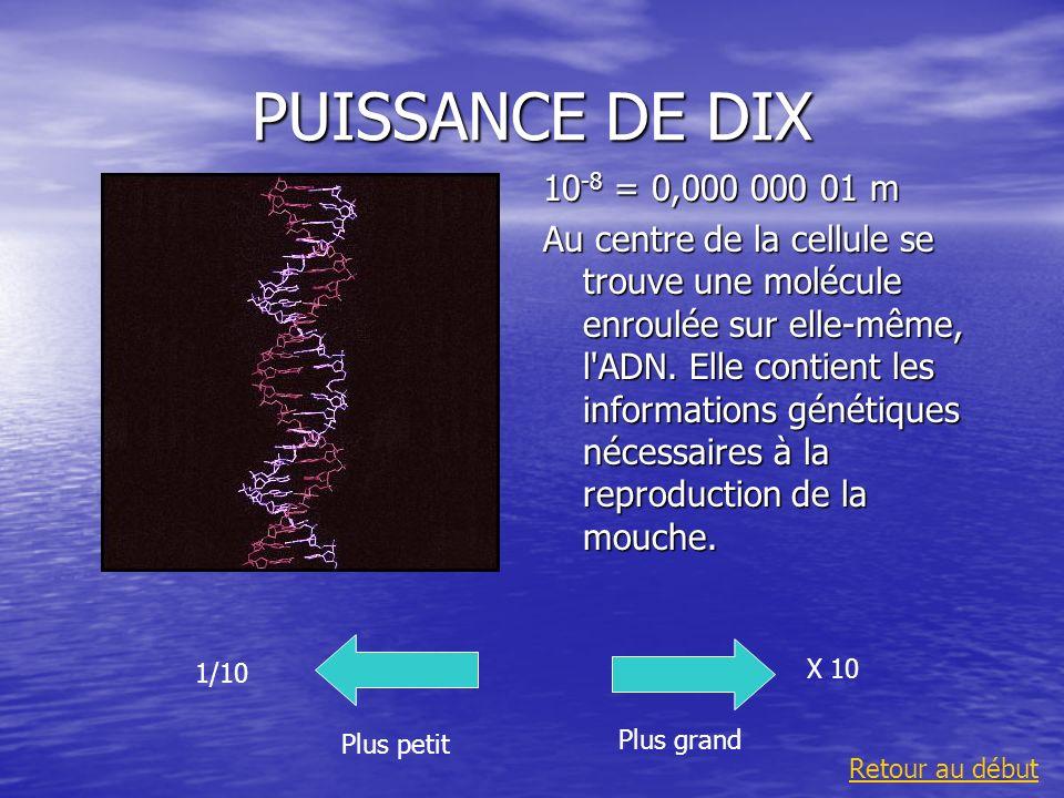 PUISSANCE DE DIX10-8 = 0,000 000 01 m.