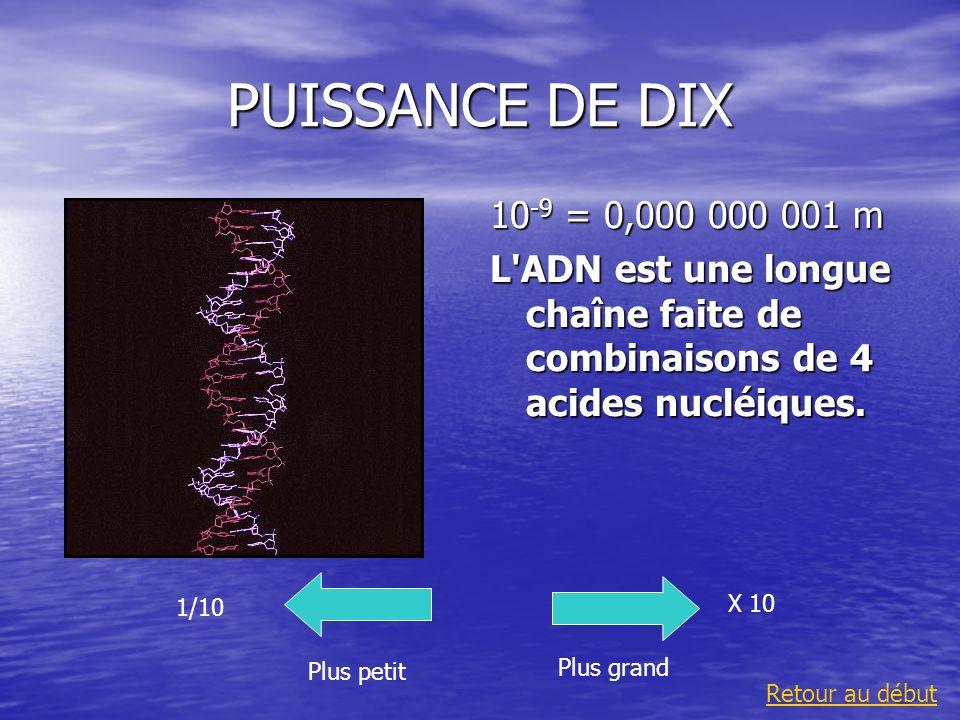 PUISSANCE DE DIX10-9 = 0,000 000 001 m. L ADN est une longue chaîne faite de combinaisons de 4 acides nucléiques.