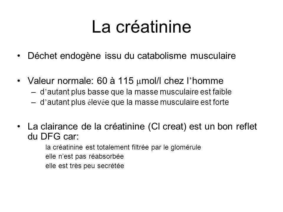 La créatinine Déchet endogène issu du catabolisme musculaire