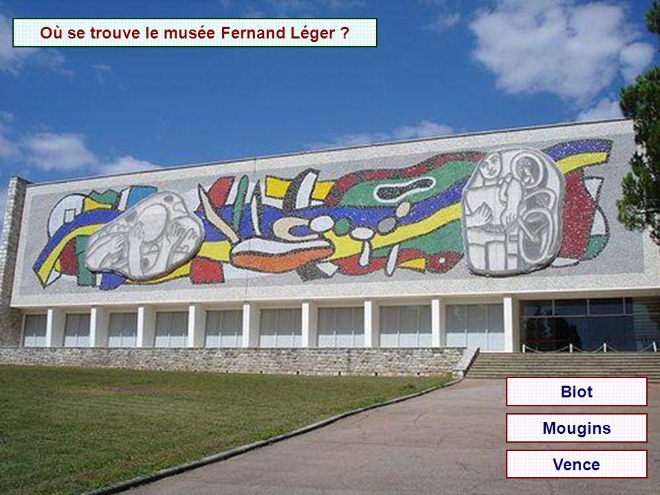 Où se trouve le musée Fernand Léger