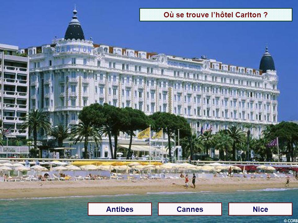 Où se trouve l'hôtel Carlton