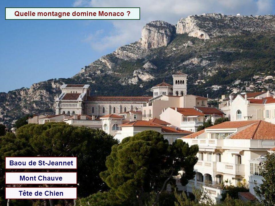 Quelle montagne domine Monaco