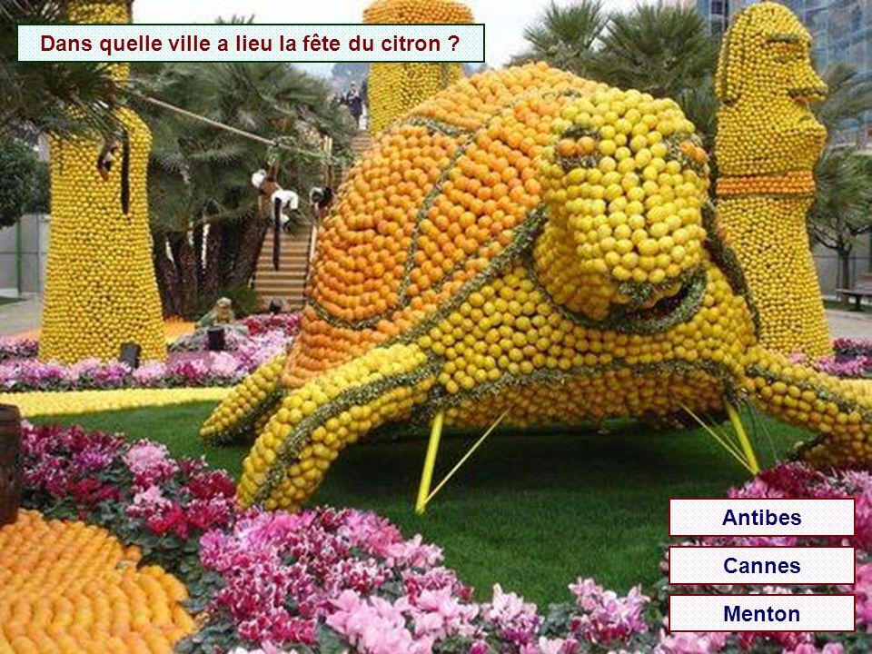 Dans quelle ville a lieu la fête du citron