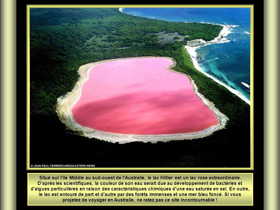 Situé sur l île Middle au sud-ouest de l Australie, le lac Hillier est un lac rose extraordinaire.