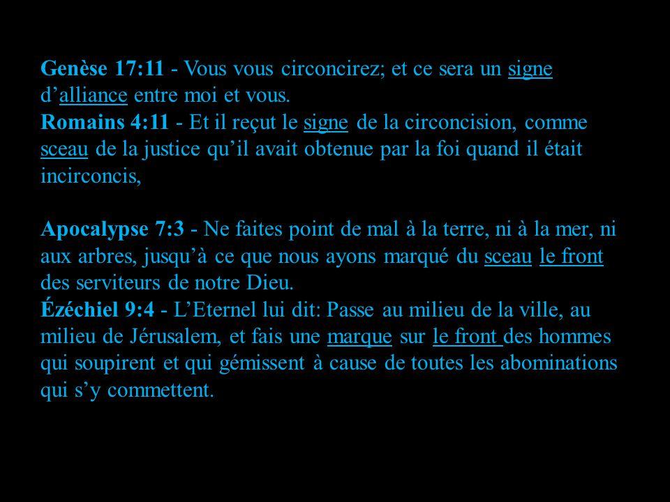 Genèse 17:11 - Vous vous circoncirez; et ce sera un signe d'alliance entre moi et vous.