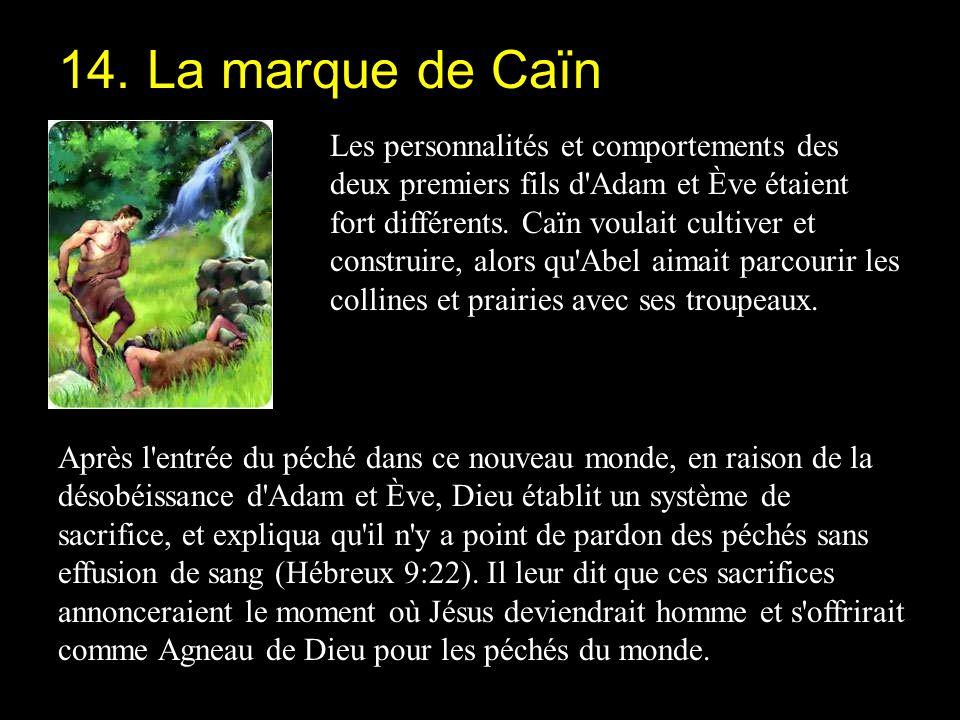 14. La marque de Caïn