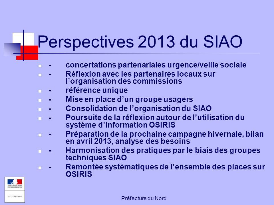 Perspectives 2013 du SIAO - concertations partenariales urgence/veille sociale.