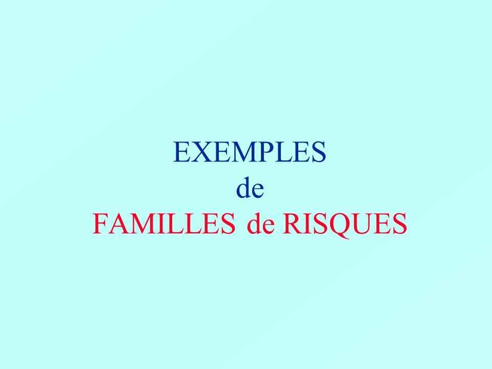 EXEMPLES de FAMILLES de RISQUES