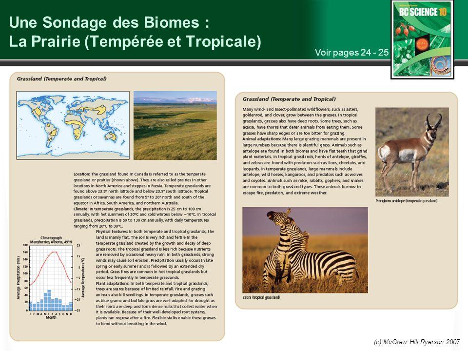 Une Sondage des Biomes : La Prairie (Tempérée et Tropicale)