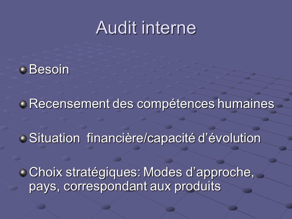 Audit interne Besoin Recensement des compétences humaines