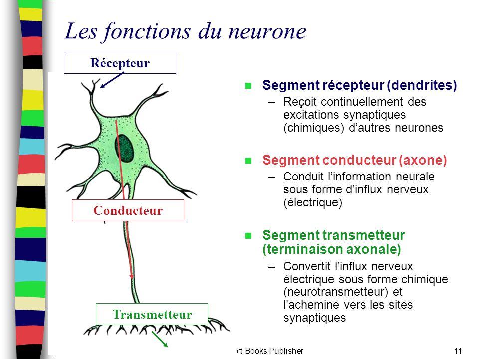 Les fonctions du neurone