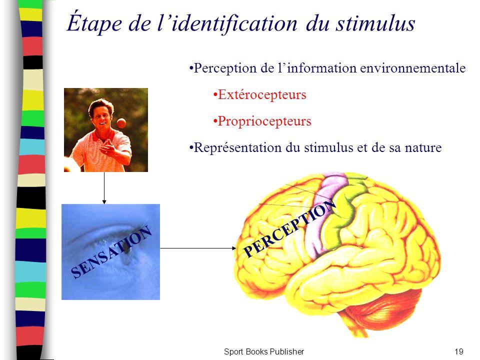 Étape de l'identification du stimulus