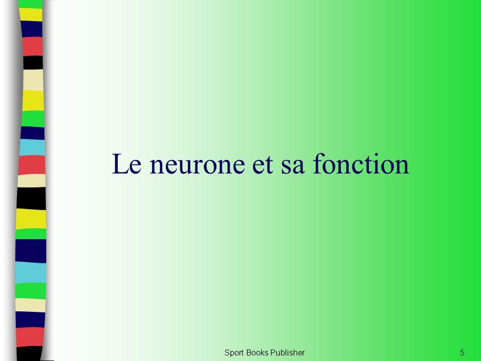 Le neurone et sa fonction