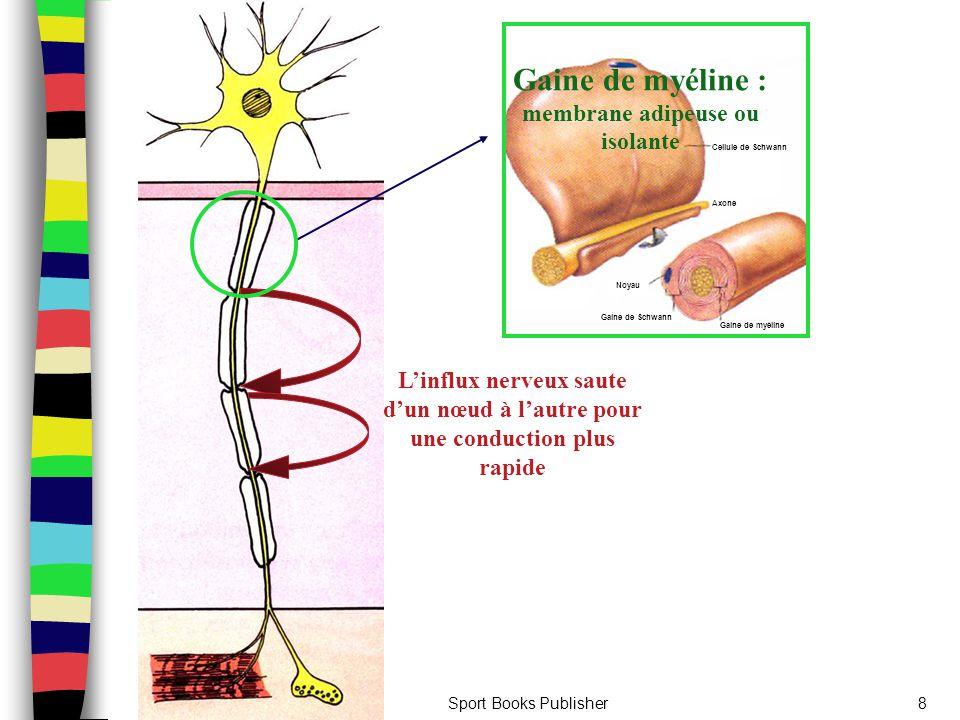 Gaine de myéline : membrane adipeuse ou isolante