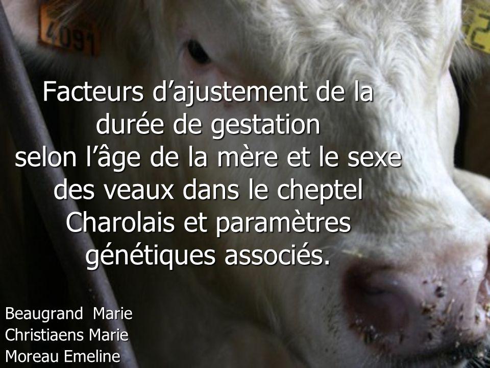 Beaugrand Marie Christiaens Marie Moreau Emeline