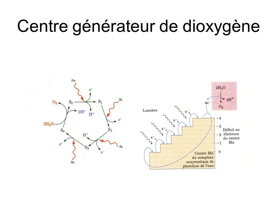 Centre générateur de dioxygène