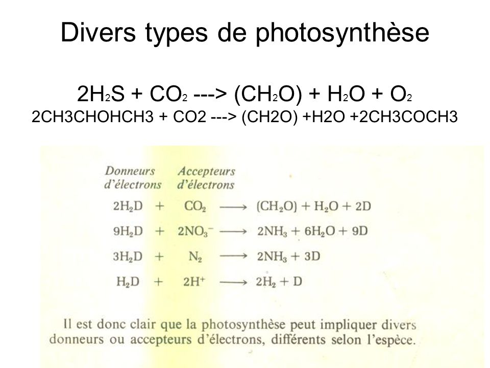 Divers types de photosynthèse 2H2S + CO2 ---> (CH2O) + H2O + O2 2CH3CHOHCH3 + CO2 ---> (CH2O) +H2O +2CH3COCH3