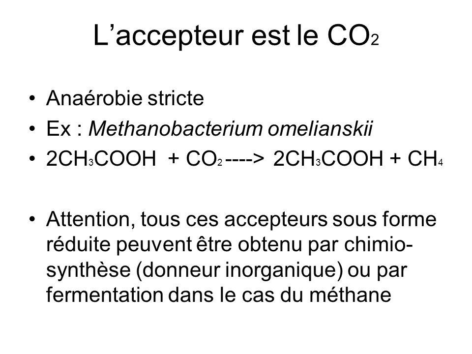 L'accepteur est le CO2 Anaérobie stricte