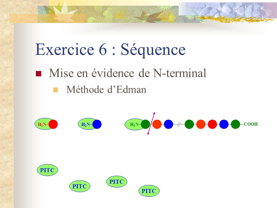 Exercice 6 : Séquence Mise en évidence de N-terminal Méthode d'Edman