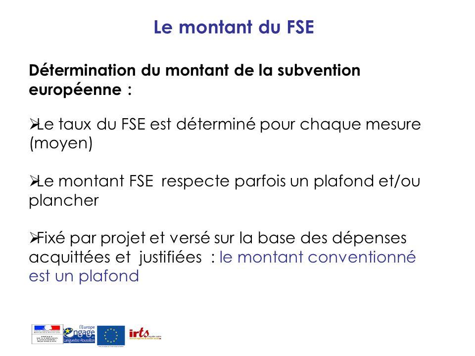 Le montant du FSE Détermination du montant de la subvention européenne : Le taux du FSE est déterminé pour chaque mesure (moyen)