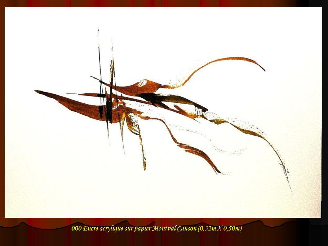 000 Encre acrylique sur papier Montval Canson (0,32m X 0,50m)
