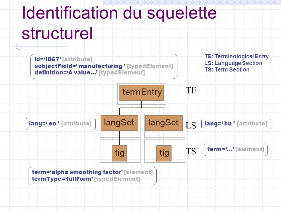 Identification du squelette structurel