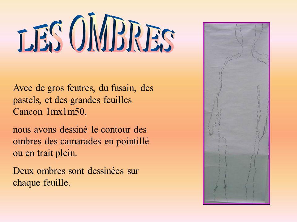 LES OMBRES Avec de gros feutres, du fusain, des pastels, et des grandes feuilles Cancon 1mx1m50,