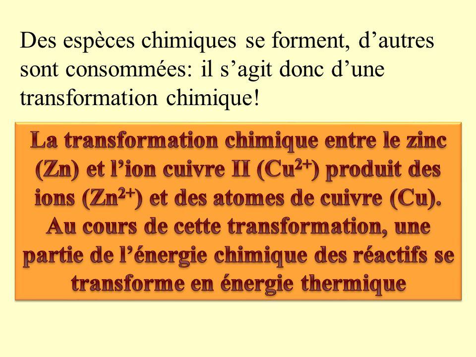 Des espèces chimiques se forment, d'autres sont consommées: il s'agit donc d'une transformation chimique!