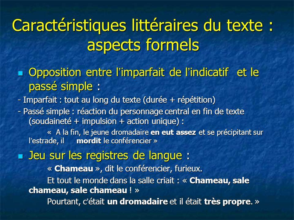 Caractéristiques littéraires du texte : aspects formels