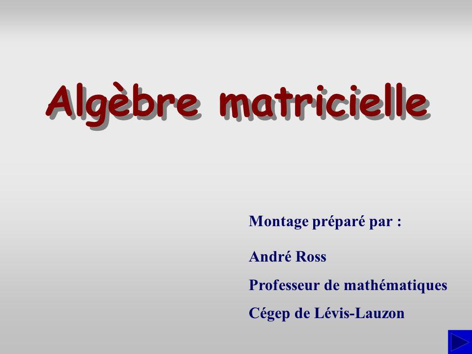 Algèbre matricielle Montage préparé par : André Ross