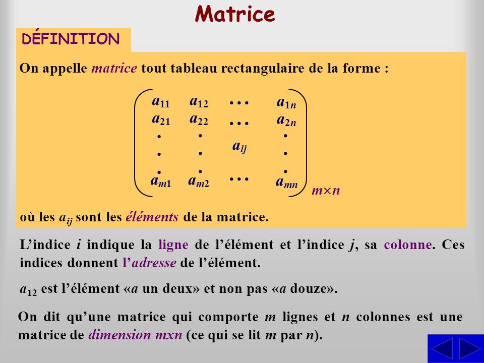 . . ... . Matrice a11 a21 am1 a12 a22 am2 aij a1n a2n amn DÉFINITION